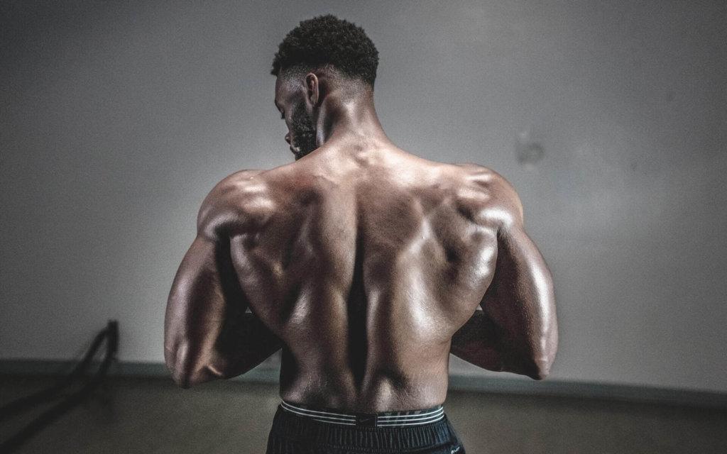 筋収縮と筋肥大の関係