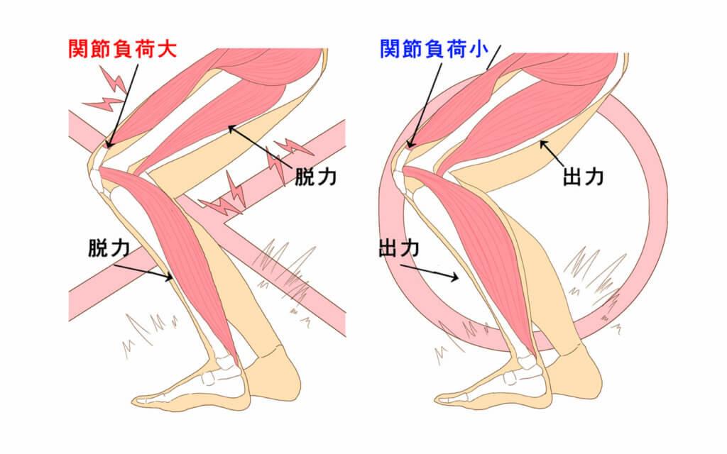 筋肉の働き3:関節への負荷を軽減する、安定させる