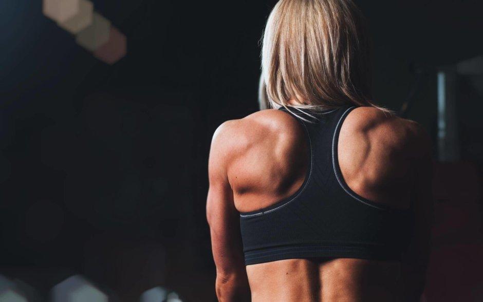 筋肉の種類と特徴【4つの分類方法について分かりやすく解説します】