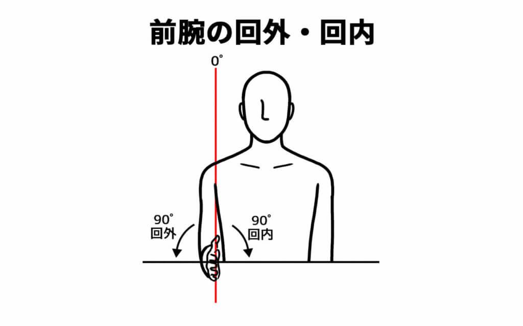 前腕の回外