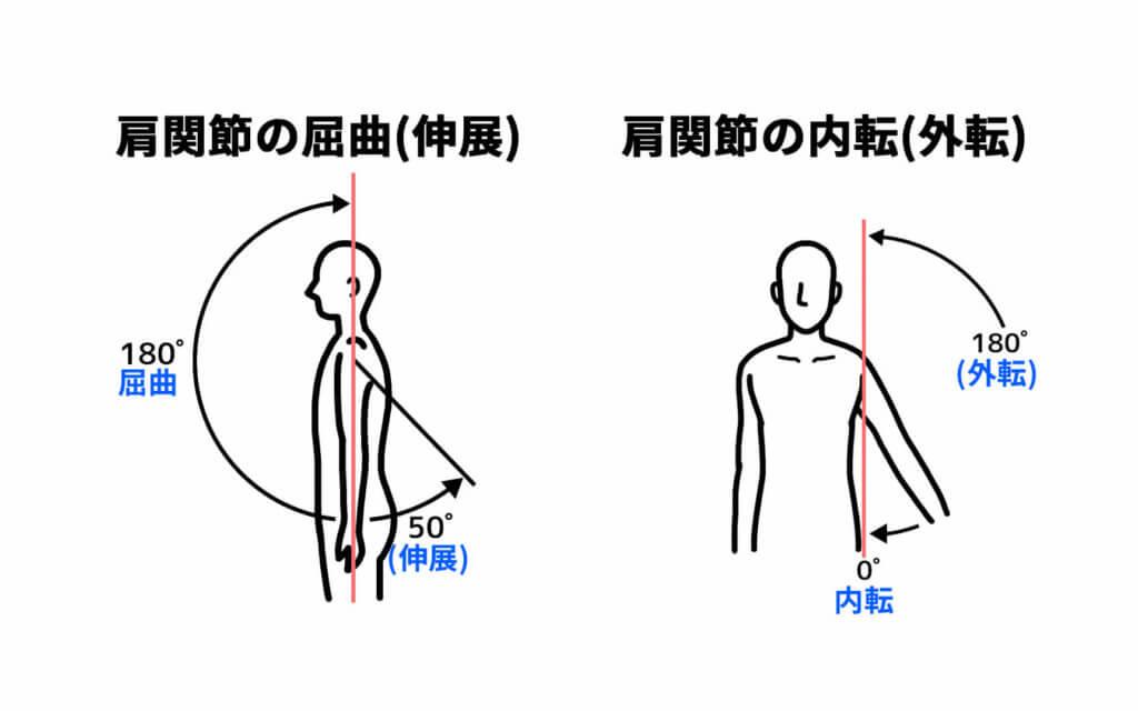 肩関節の屈曲と内転