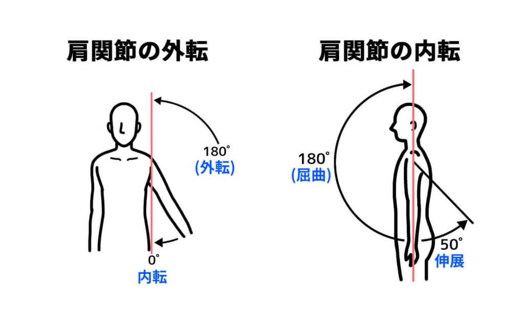 肩関節の内転や伸展