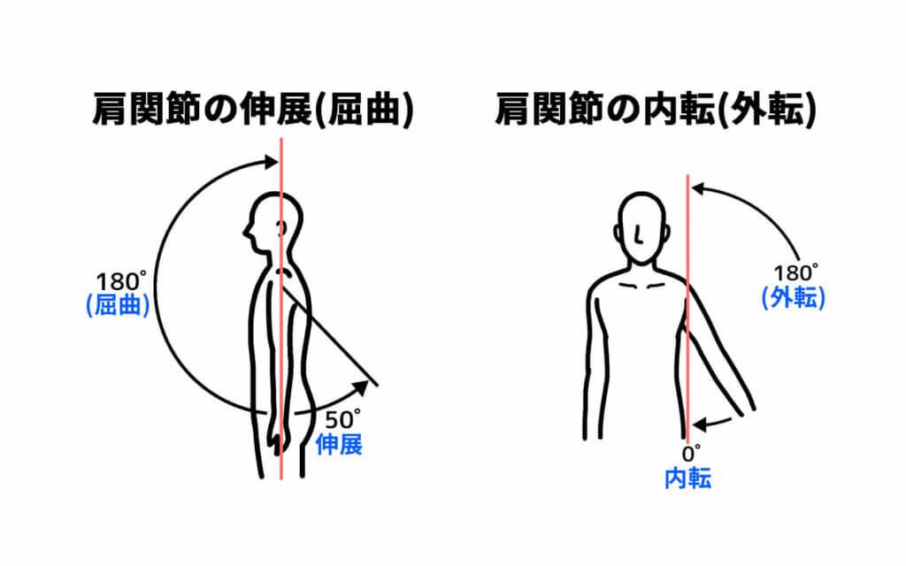 肩関節の伸展と内転