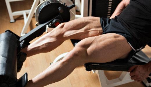 大腿四頭筋を鍛える筋トレ種目【スポーツパフォーマンスや基礎代謝の向上に】